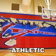 Eyeful Art Athletic Indoor Murals