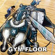 Eyeful Art Gym Floors