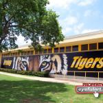 Irving High School Eyeful Art