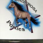 Ponderosa Elementary 2007 Eyeful Art