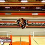 Salyards Cypress-Fairbanks main gym 2012 Tiger Mural Eyeful Art