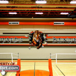 Salyards Cypress-Fairbanks main gym 2012 Tiger Mural Eyeful Art